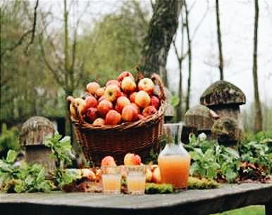 Foto Mobiele fruitpers product