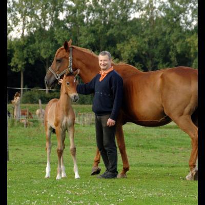 Foto paardenmelkerij Filippus producent|Foto logo mmm...eetjesland