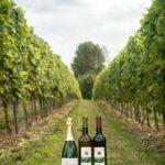 Foto producten wijngoed 't Varent