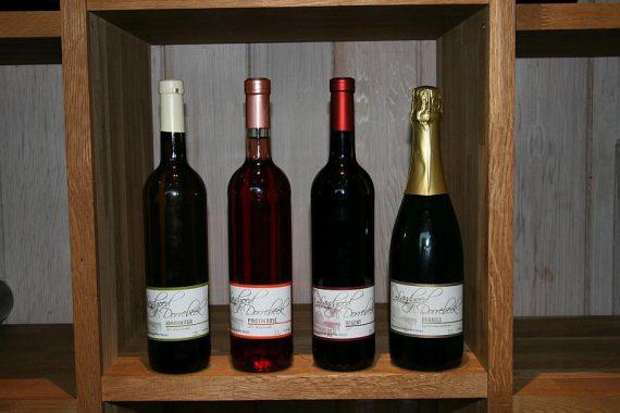Foto wijndomein Dorrebeek product