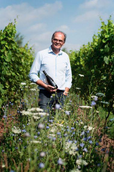 Foto wijngaard Het Verhaal LZ product