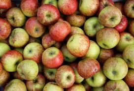 Foto Fruit-land product appelen
