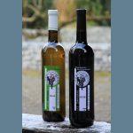 Foto wijndomein De 3 Fonteinen product