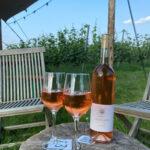 foto product roséwijn leeflank